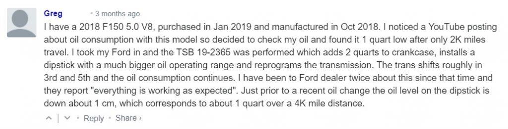 F-150 5.0 savininko komentaras
